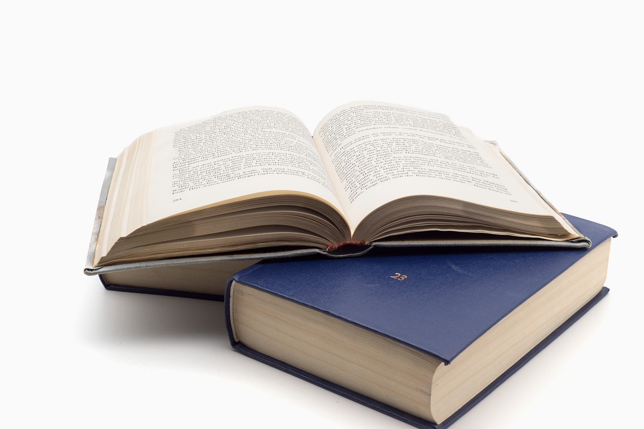 Book Read Literature Knowledge  - Sven_fotografiert / Pixabay